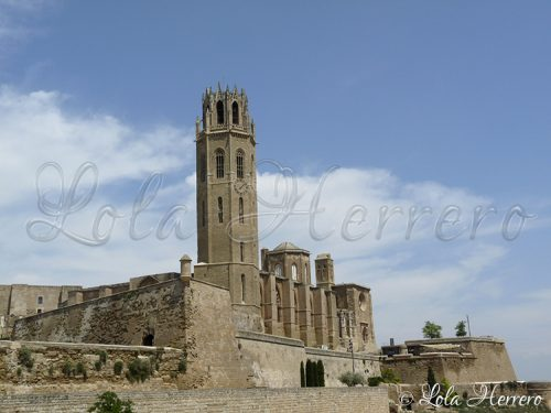 Catedral Lleida (295)